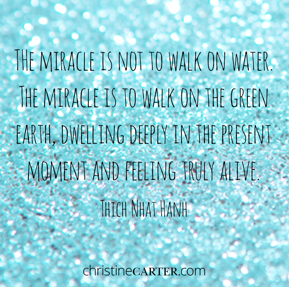 """""""The miracle is not to walk on water. The miracle is to walk on the green earth, dwelling deeply in the present moment and feeling truly alive."""" --Thich Nhat Hanh"""