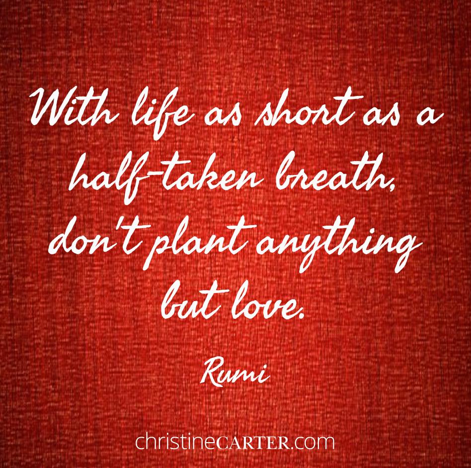 TT-Rumi